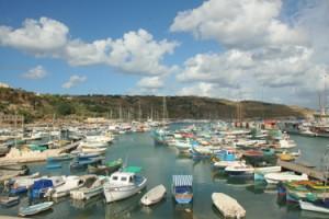 Fishing Boats in Malta