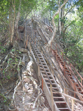 Stairway at Tikal