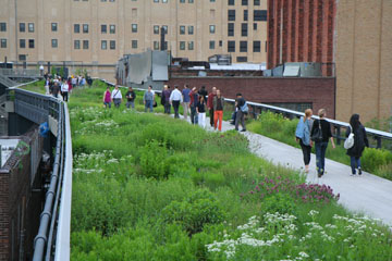 NYC Major Tourist Attraction - High Line