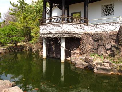 Snug Harbor Staten Island Chinese Gardens