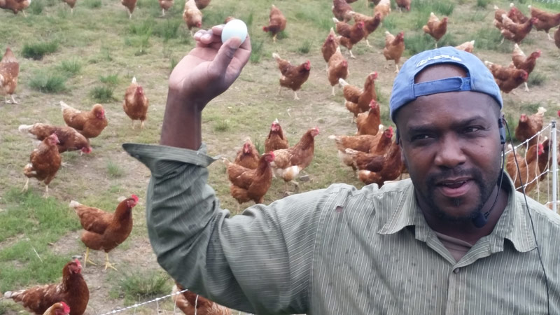 Fishkill Farms worker Robin with a green egg