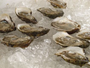 Naked Cowboy oysters harvested by divers off NY coast