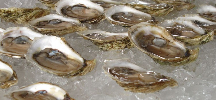 Tour Review: RootedNY Local Beer & Oysters in Long Island