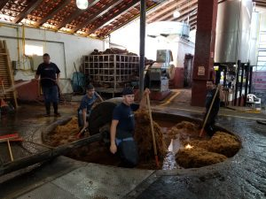 Making tequila at Fortaleza Distillery